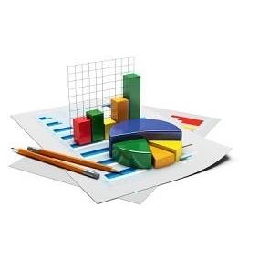 Отчет о доходах и расходах